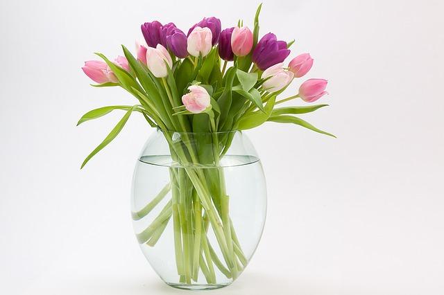 tulipán kytice