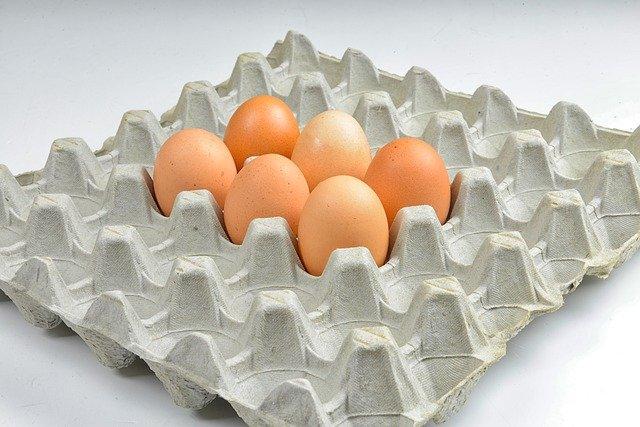 plato na slepičí vejce.jpg